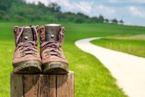 Geführte Wadnerungen, Familienausflüge und Freizeitspass